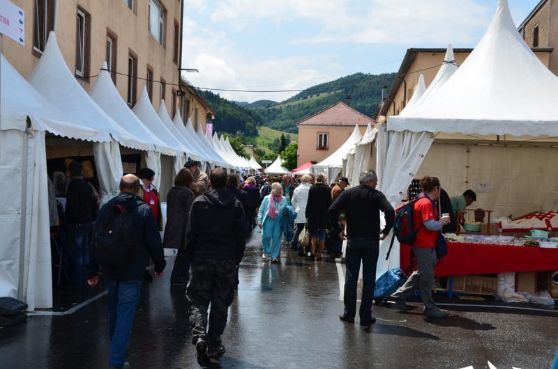 Sainte-Marie-aux-Mines 2013 : 50e anniversaire de la bourse minéralogique 2a10