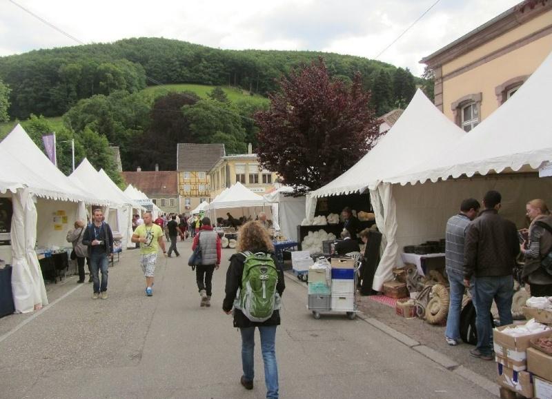 Sainte-Marie-aux-Mines 2013 : 50e anniversaire de la bourse minéralogique 2f10