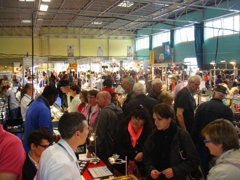Sainte-Marie-aux-Mines 2013 : 50e anniversaire de la bourse minéralogique 2h10
