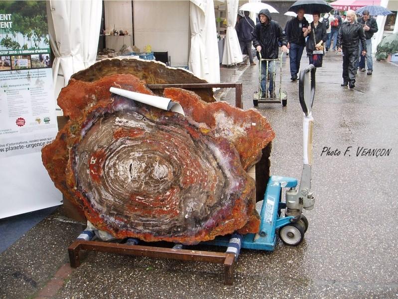 Sainte-Marie-aux-Mines 2013 : 50e anniversaire de la bourse minéralogique 30a10
