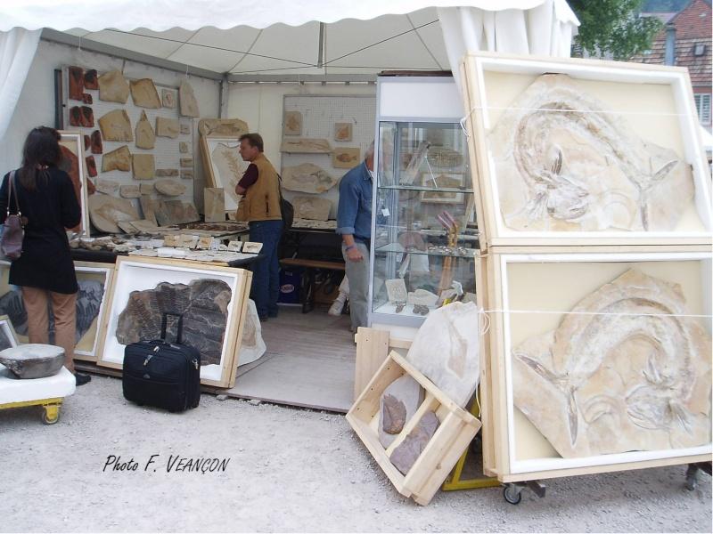 Sainte-Marie-aux-Mines 2013 : 50e anniversaire de la bourse minéralogique 34b11