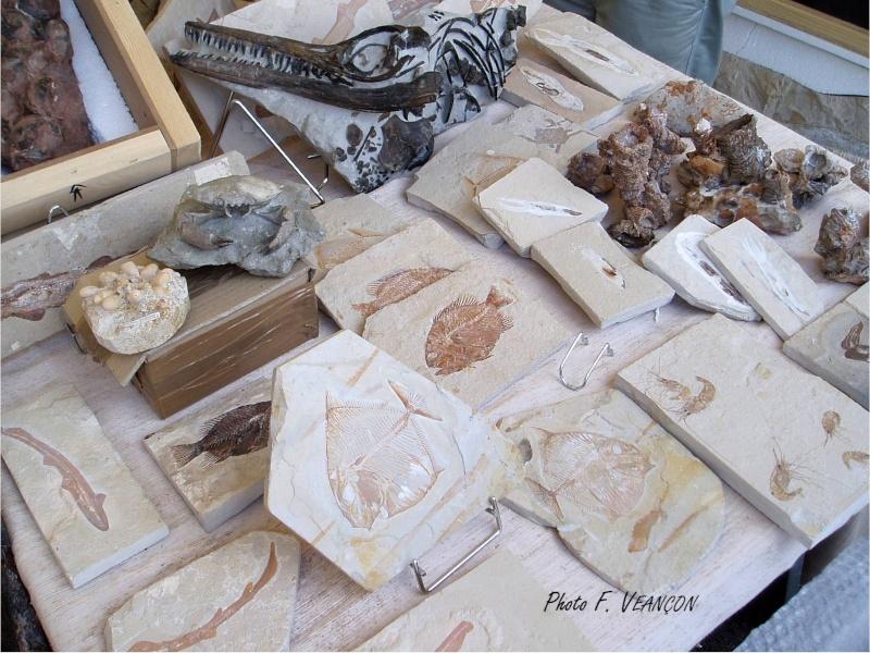 Sainte-Marie-aux-Mines 2013 : 50e anniversaire de la bourse minéralogique 3510