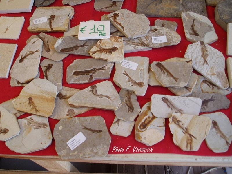 Sainte-Marie-aux-Mines 2013 : 50e anniversaire de la bourse minéralogique 3710