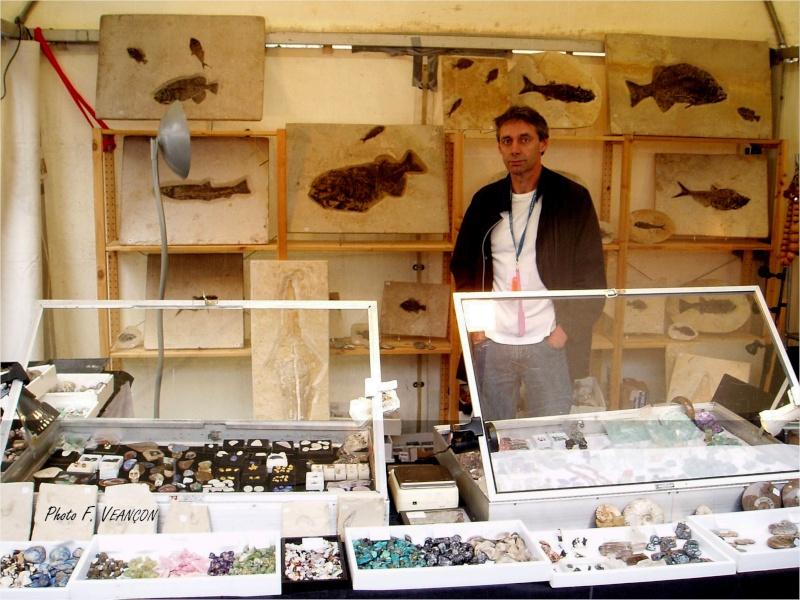 Sainte-Marie-aux-Mines 2013 : 50e anniversaire de la bourse minéralogique 3910