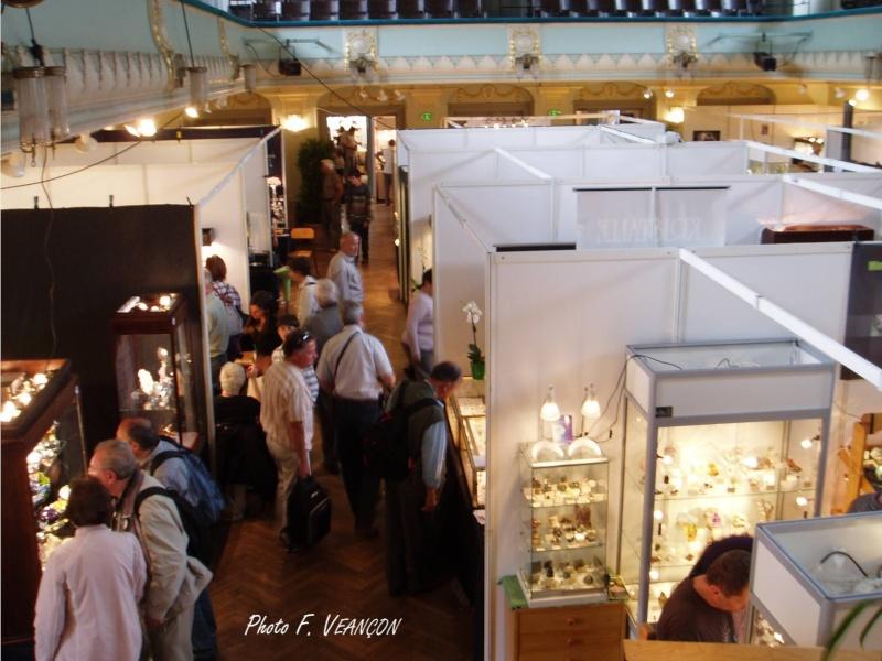 Sainte-Marie-aux-Mines 2013 : 50e anniversaire de la bourse minéralogique 3c11