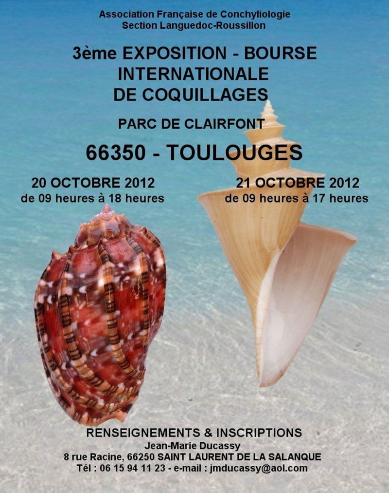 2012 Bourse Toulouges / Perpignan - 20 & 21 octobre Toulou10