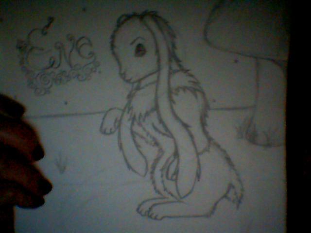 Bunny!!! Pictur10
