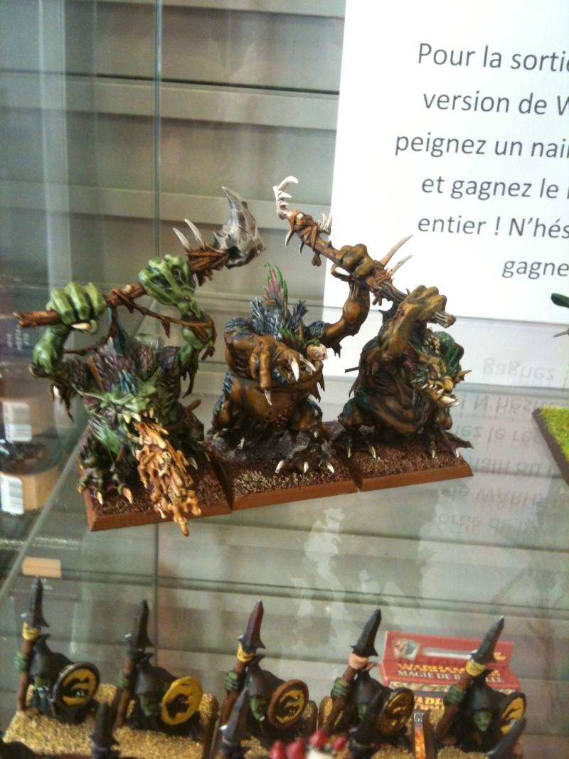 open warhammer 2010 Photo_11