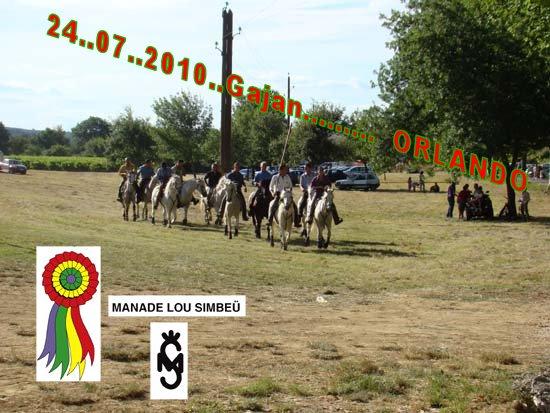 24...07...2010......  GAJAN........Bandide Dsc04910
