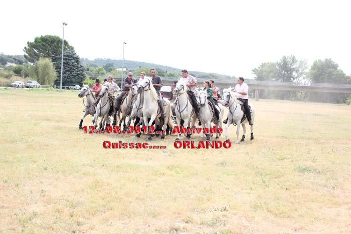 10...08..2012...Quissac.... Enciero... Bandide Img_0812