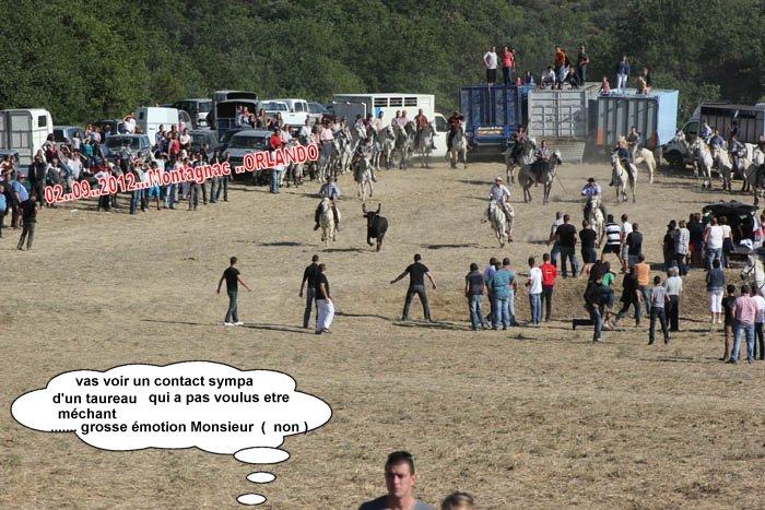 ......  02...09..2012...Montagnac Img_2013