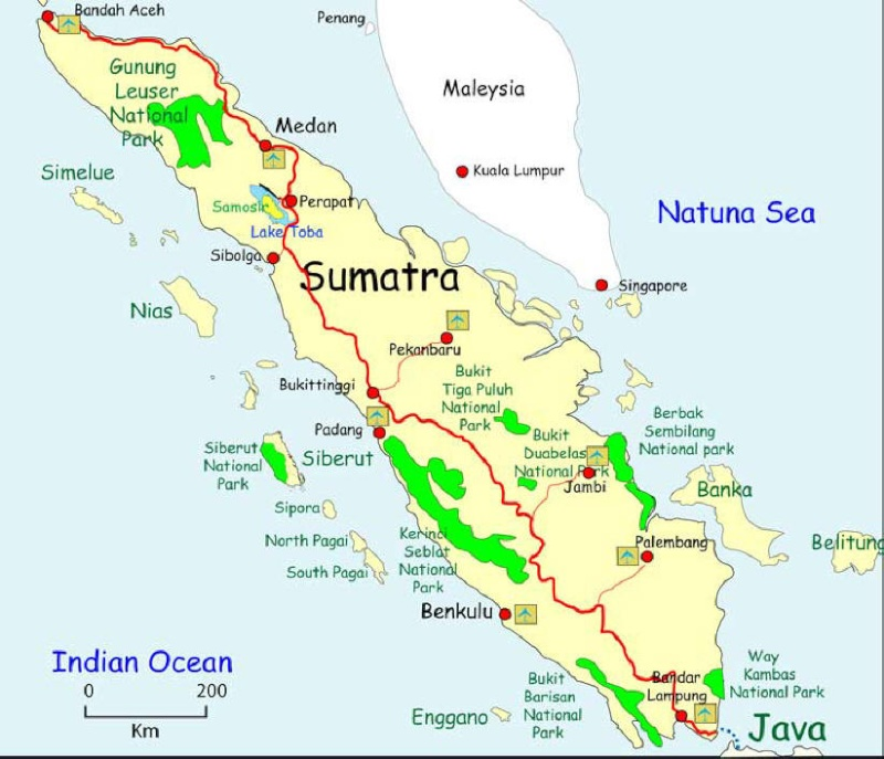 Berbak Parc National (Ile de Sumatra) Sumatr10