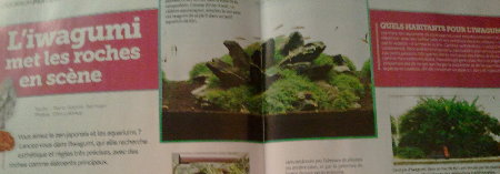 L'Aquarium Magazine - Nov-Déc 2012 (va vous intéresser !) Sans_t11