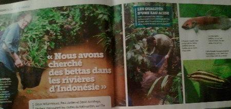 L'Aquarium Magazine - Nov-Déc 2012 (va vous intéresser !) Sans_t12
