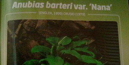 L'Aquarium Magazine - Nov-Déc 2012 (va vous intéresser !) Sans_t13