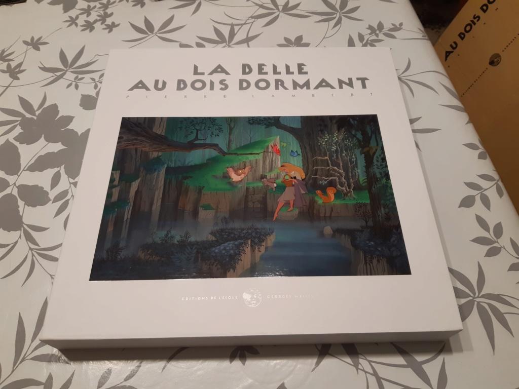 La Belle au Bois Dormant - Page 9 20190713