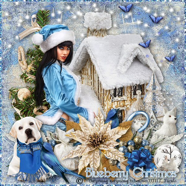 Blueberry Christmas Image162