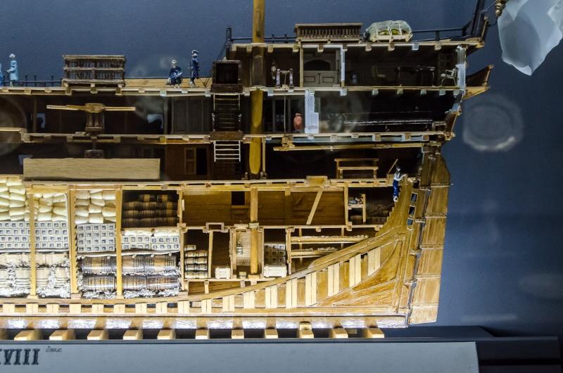 Modèles en coupe longitudinale Dsc_9110
