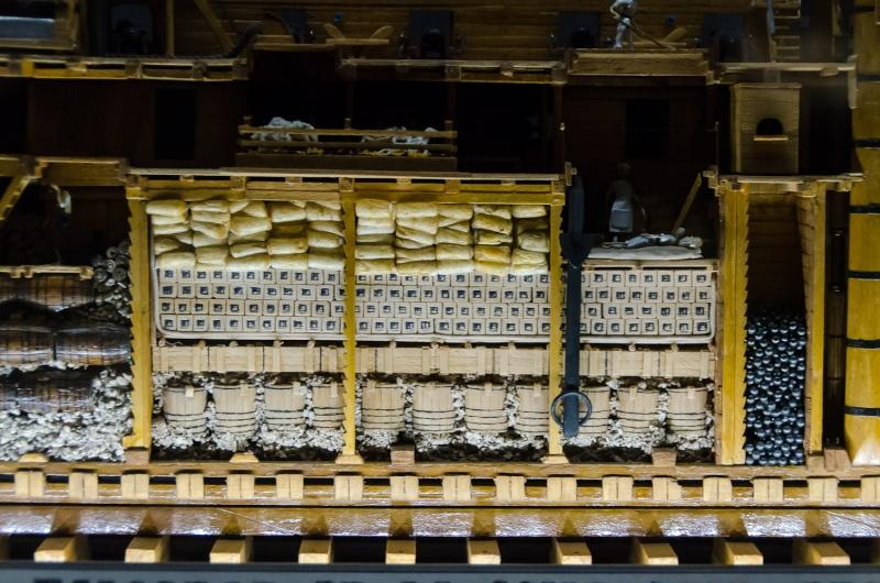 Modèles en coupe longitudinale Dsc_9114