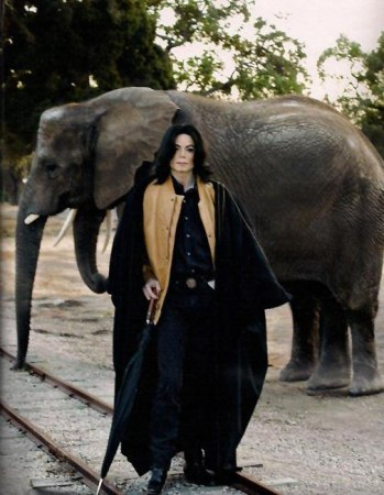 Collection MJ-Story : Michael et les animaux ^^ - Page 8 50670110