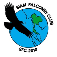 Siam Falconry Club