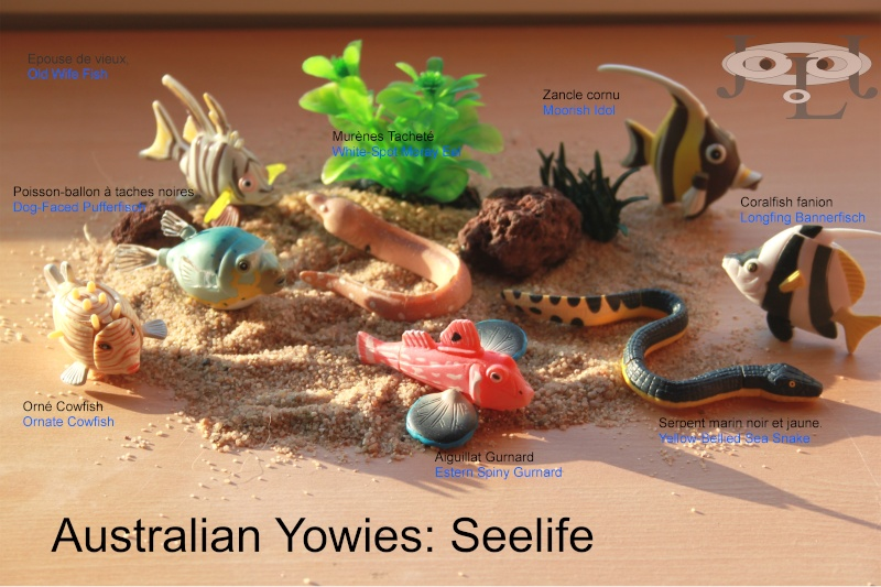 My collection Australian Yowies - Page 2 New_an16