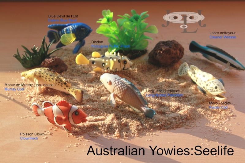 My collection Australian Yowies - Page 2 New_an22