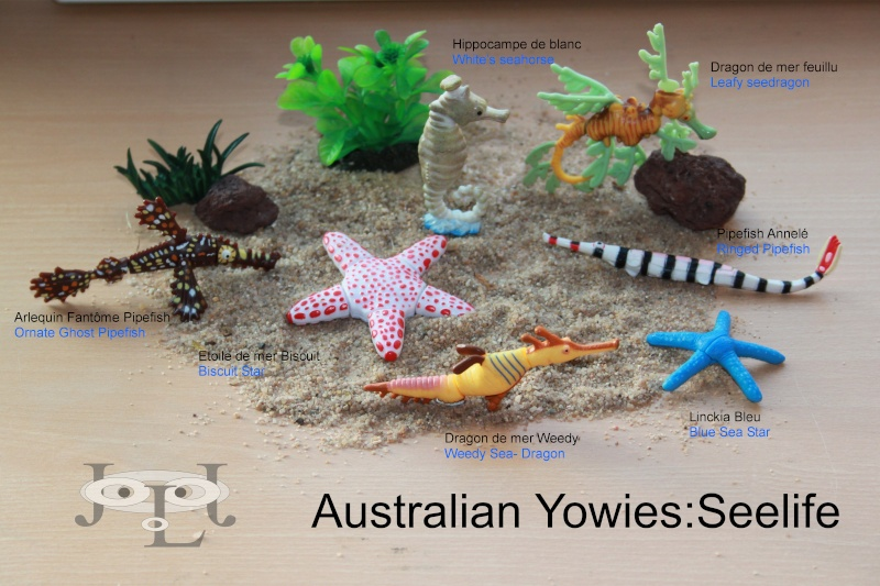 My collection Australian Yowies - Page 2 New_an23