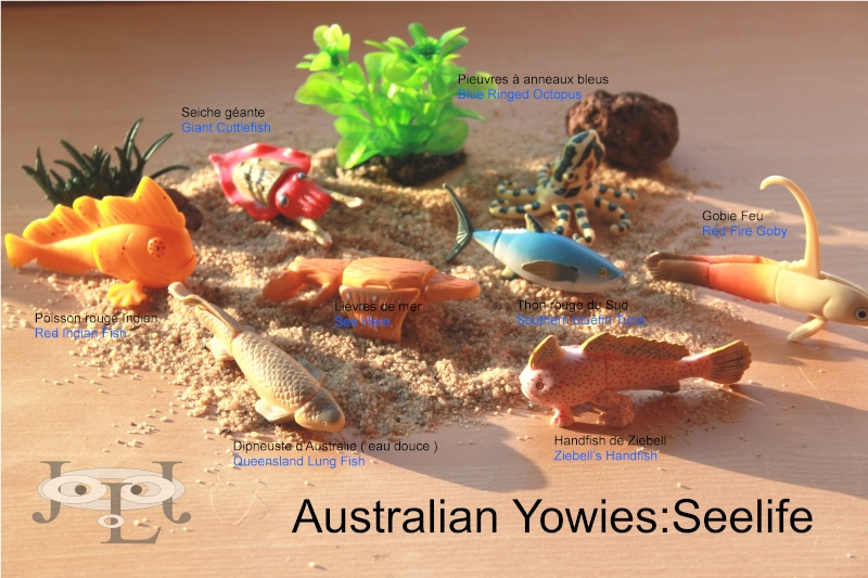 My collection Australian Yowies - Page 2 New_an24