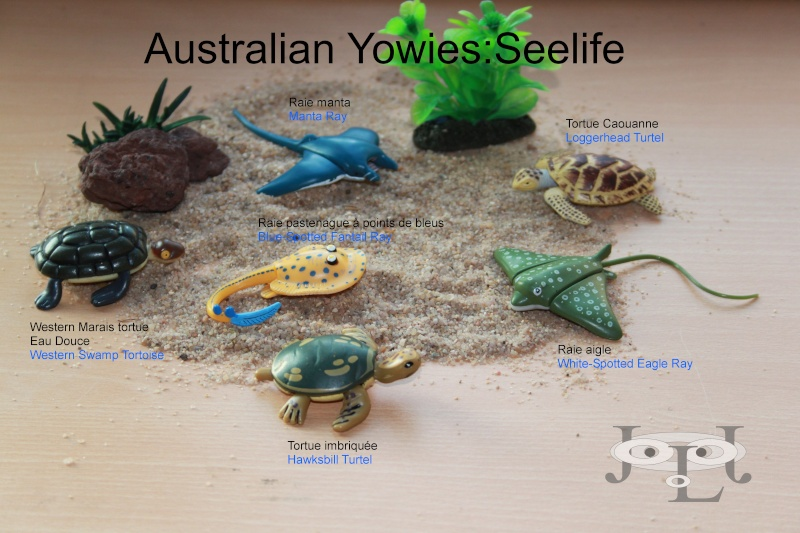 My collection Australian Yowies - Page 2 New_an26