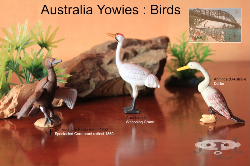 My collection Australian Yowies - Page 2 New_an34