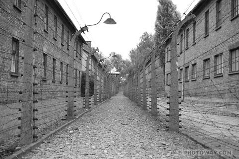 Un fil de discussion en mémoire des millions de victimes des nazis - Page 2 Ausc9910