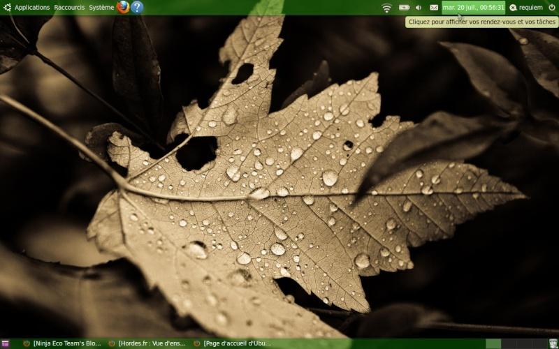 Linux: L'alternative à Windows Captur11