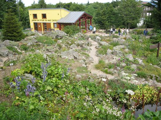 Jardin d 39 altitude du haut chitelet vosges - Jardin d altitude du haut chitelet ...
