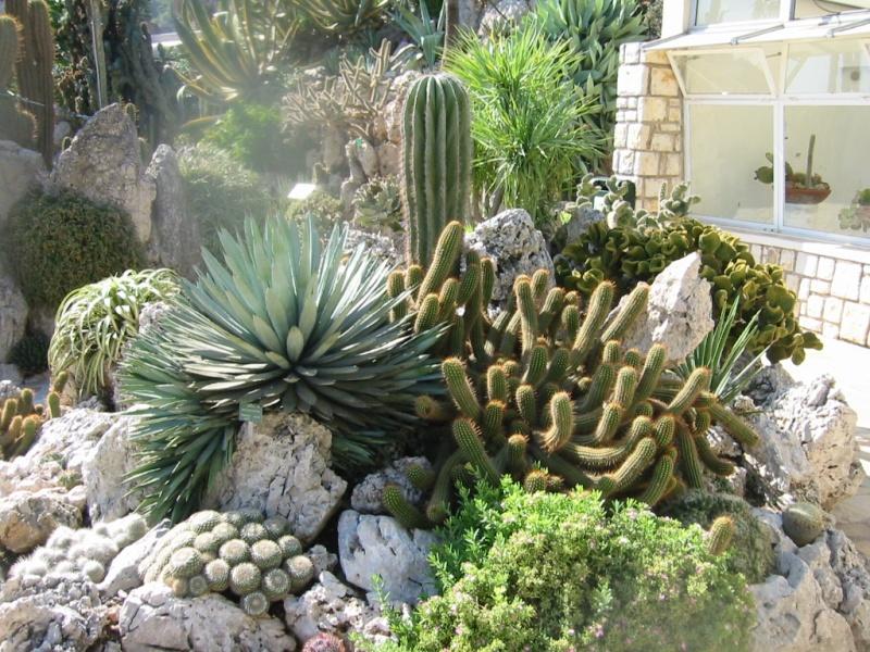 Quelques Jardins  Jardin15