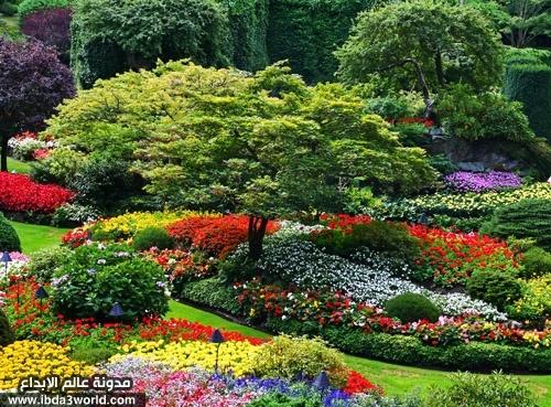 Quelques Jardins  Les_ja11