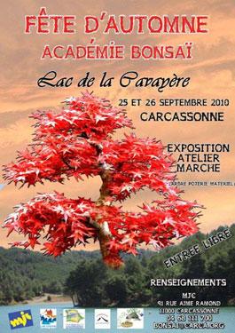 expo Carcassonne le 25 et 26 septembre Affich10