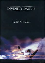 Divinity Dawns Divbar11