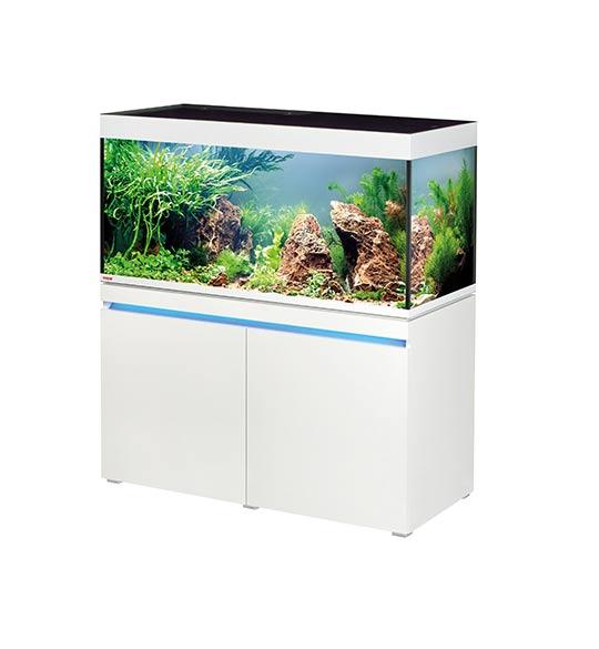 hop je veux me lancer pour un premier aquarium Aquari10