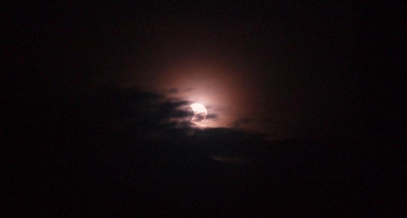 Eclipse solaire  P1046211
