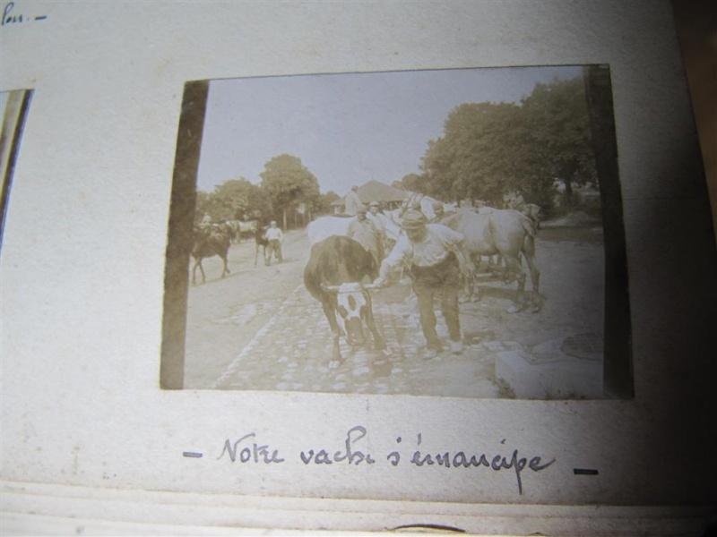 album photo d'un poilu (+ de 100 photos dans ce post ) .... ;) - Page 3 Img_4042
