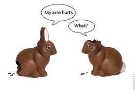Random pic(s) - Page 7 Bunny14