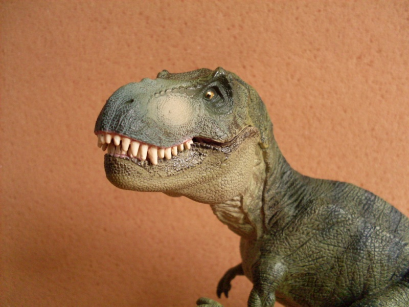 Green Tyrannosaurus Rex_pa10