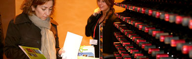 FITUR 2011 Pabell10