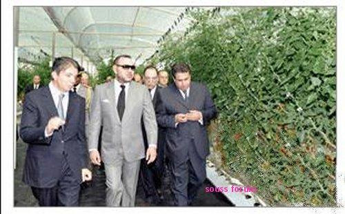 Sidna a Ait Amira, un changement radicale imprègnera la région Souss_10