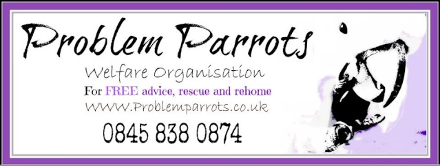 Problem Parrots Welfare organisation