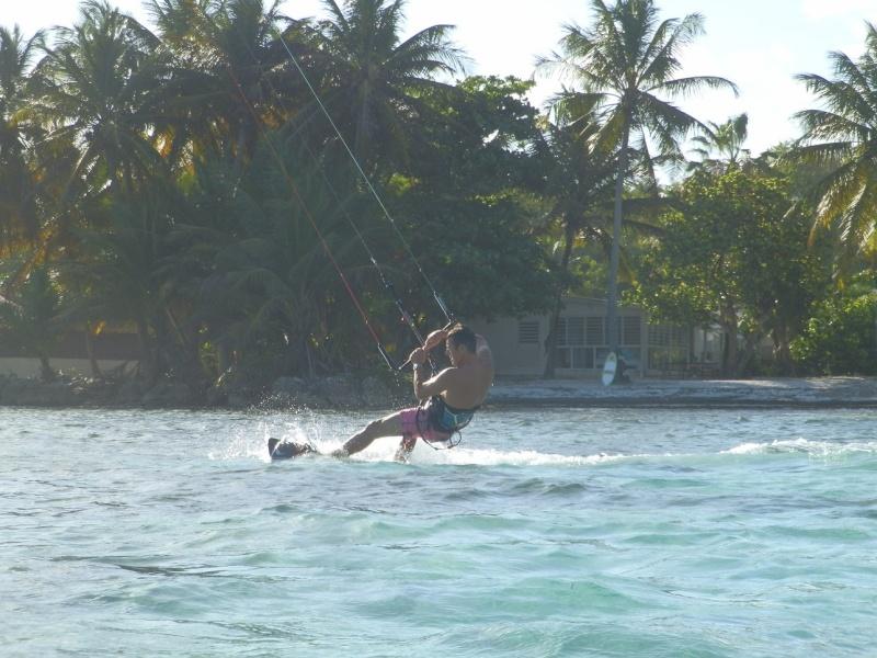 Un bonjour des tropiques P4220110