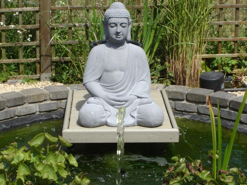 contruire un bassin  jardin Dsc08512