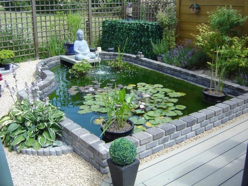 contruire un bassin  jardin Dsc08513
