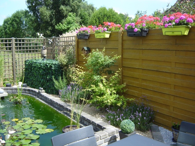 contruire un bassin  jardin Dsc08514
